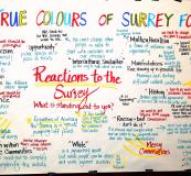 True Colours of Surrey Forum 10