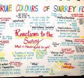 True Colours of Surrey Forum 10